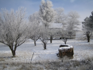 winter_wonderland_ritzville